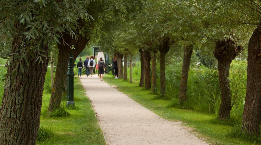 Zaanse Schans which includes a garden