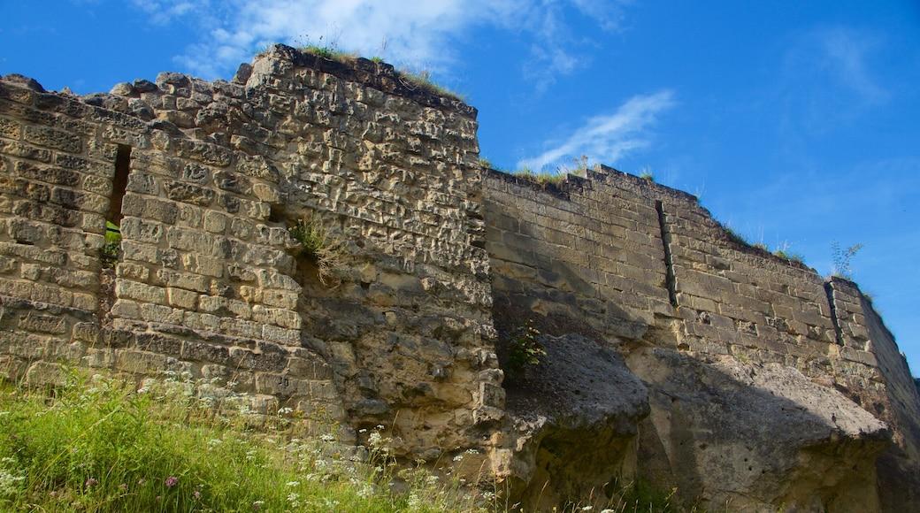 Castello di Valkenburg che include castello, rovine di un edificio e oggetti d\'epoca