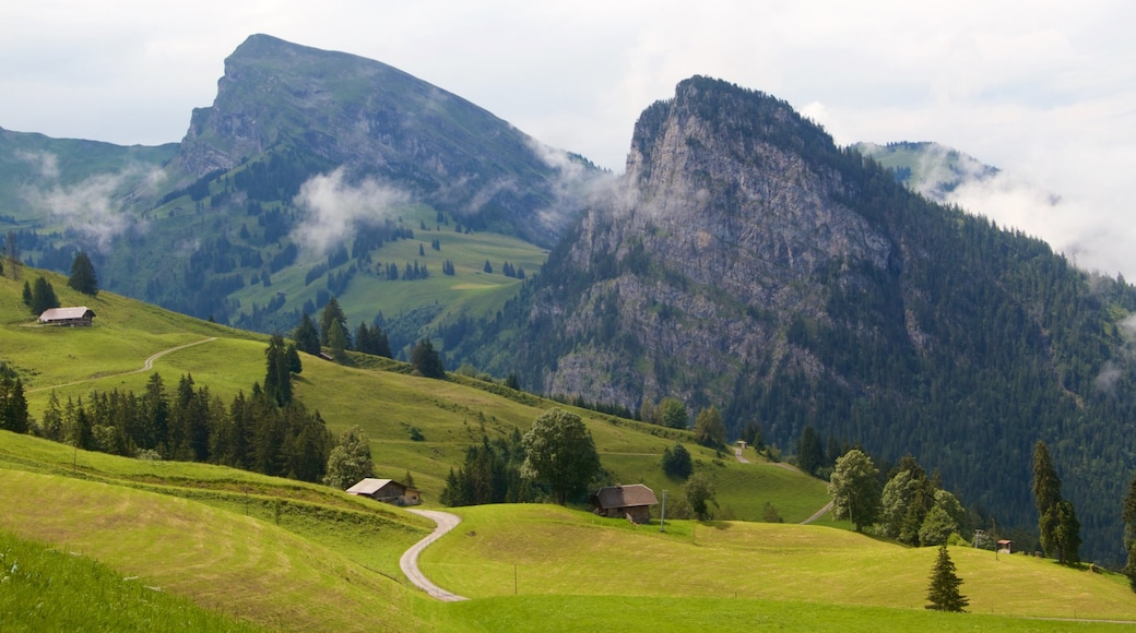 Bernese Alps which includes mountains and tranquil scenes