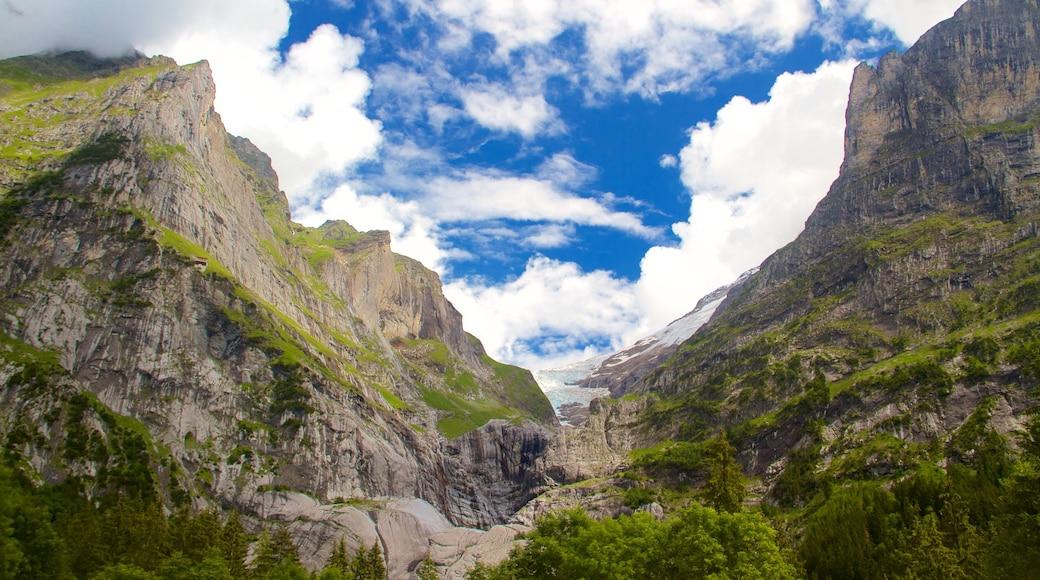Grindelwald mettant en vedette montagnes