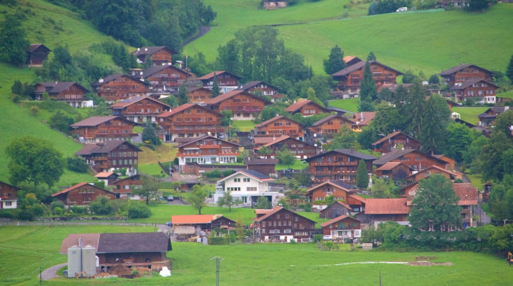 Bern featuring tranquil scenes and a small town or village