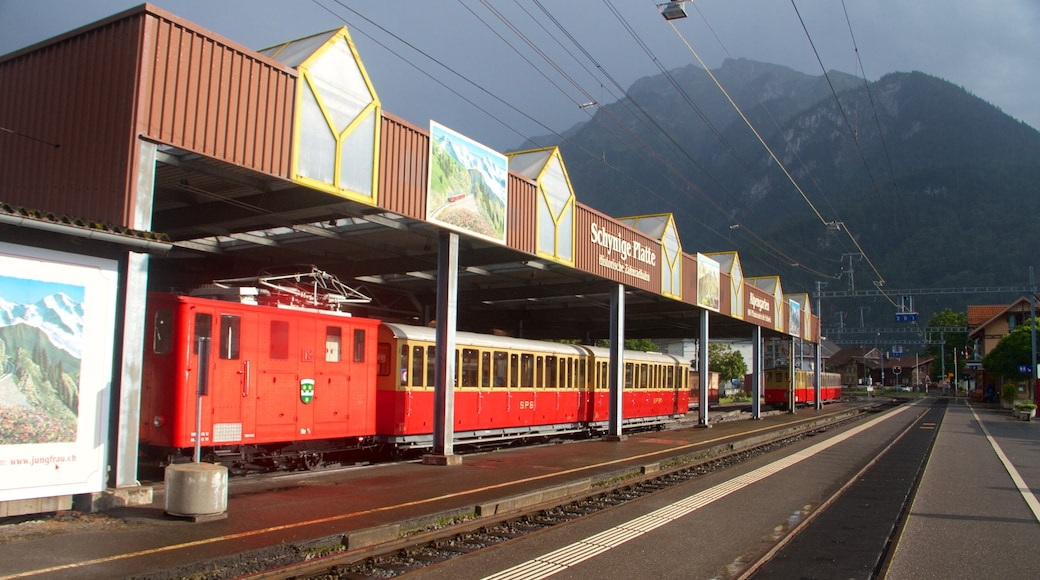 Wilderswil showing mountains, railway items and signage