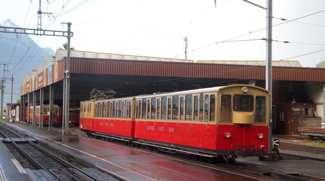 Wilderswil showing railway items