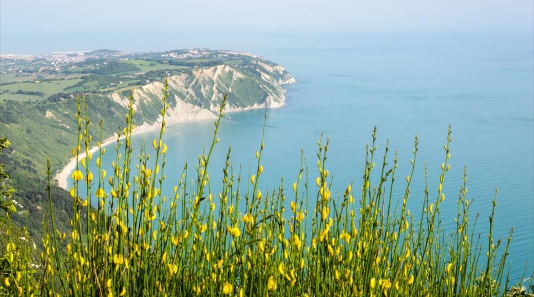 Sirolo qui includes fleurs, plage et vues littorales