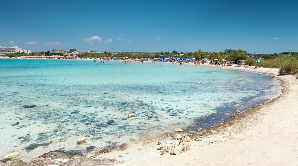 Porto Cesareo mostrando spiaggia sabbiosa e vista della costa