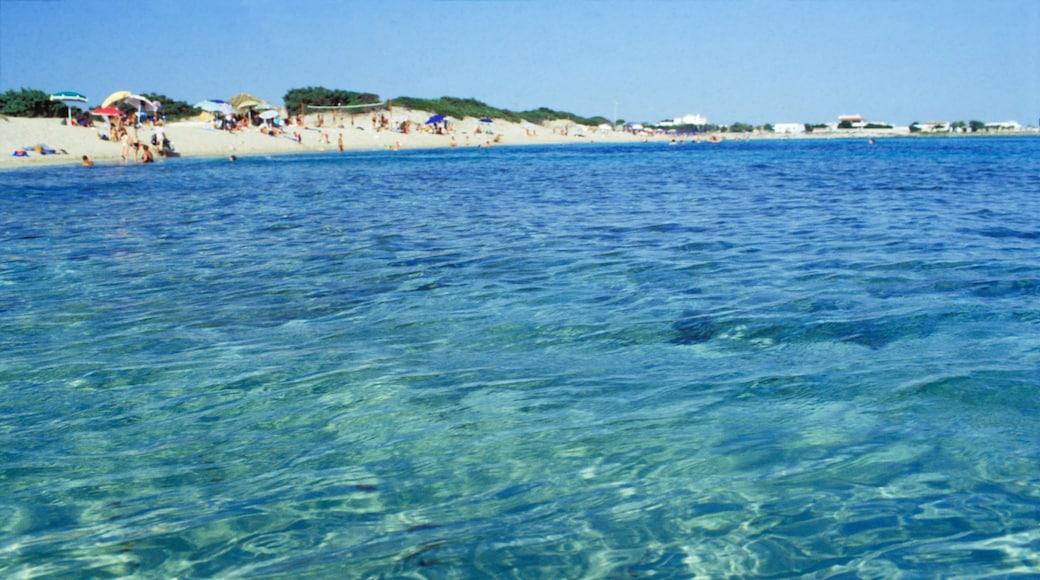 Porto Cesareo mostrando vista della costa e spiaggia sabbiosa