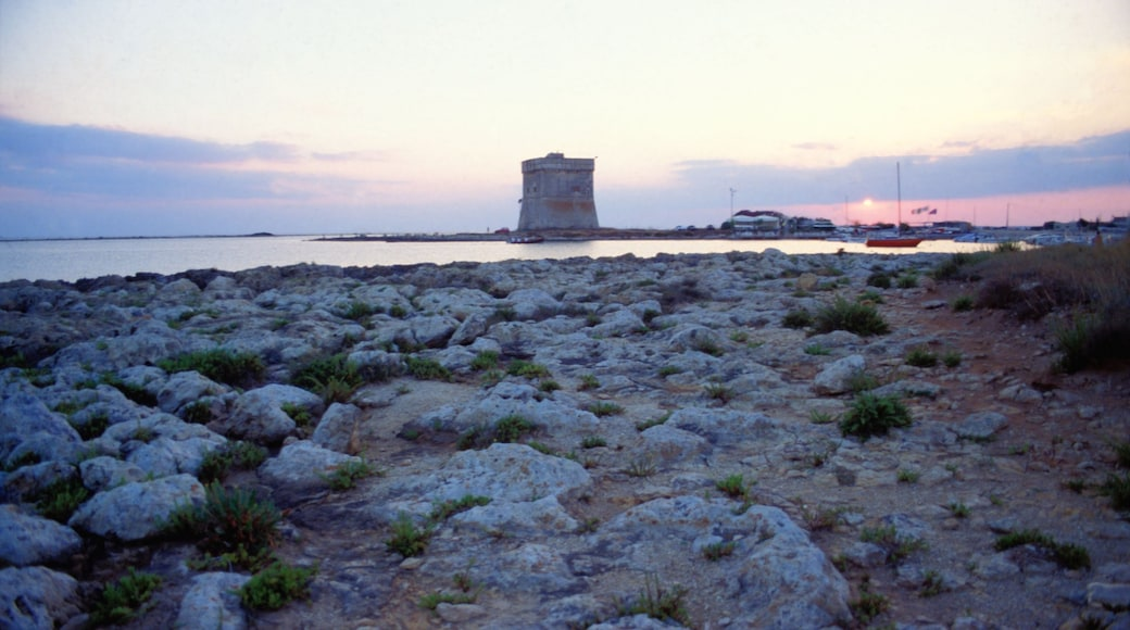 Porto Cesareo che include baia e porto, costa frastagliata e vista della costa