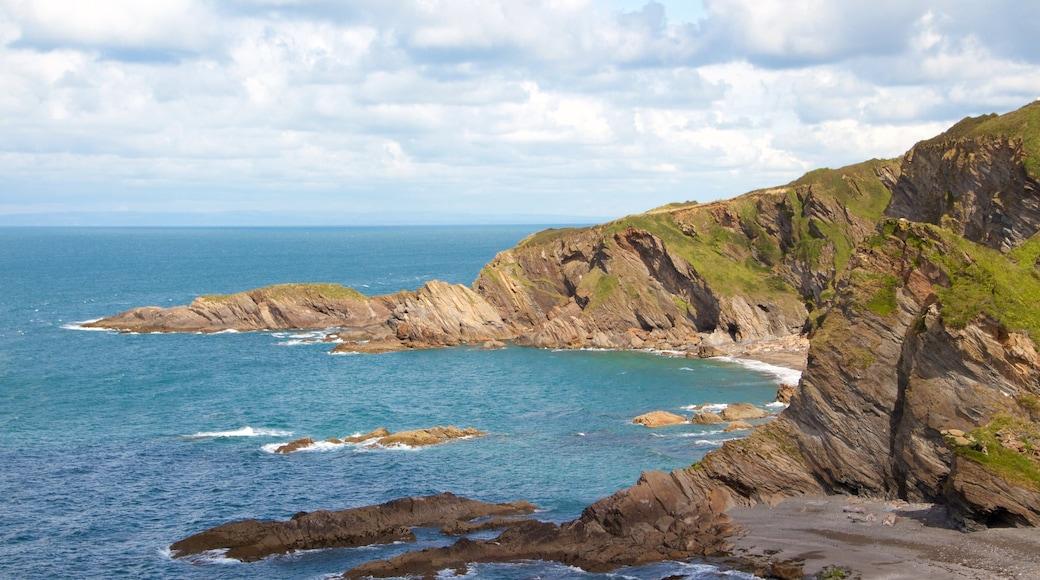 Devon toont rotsachtige kustlijn en algemene kustgezichten