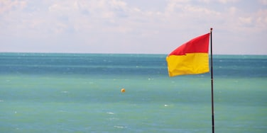 Brighton Beach featuring general coastal views
