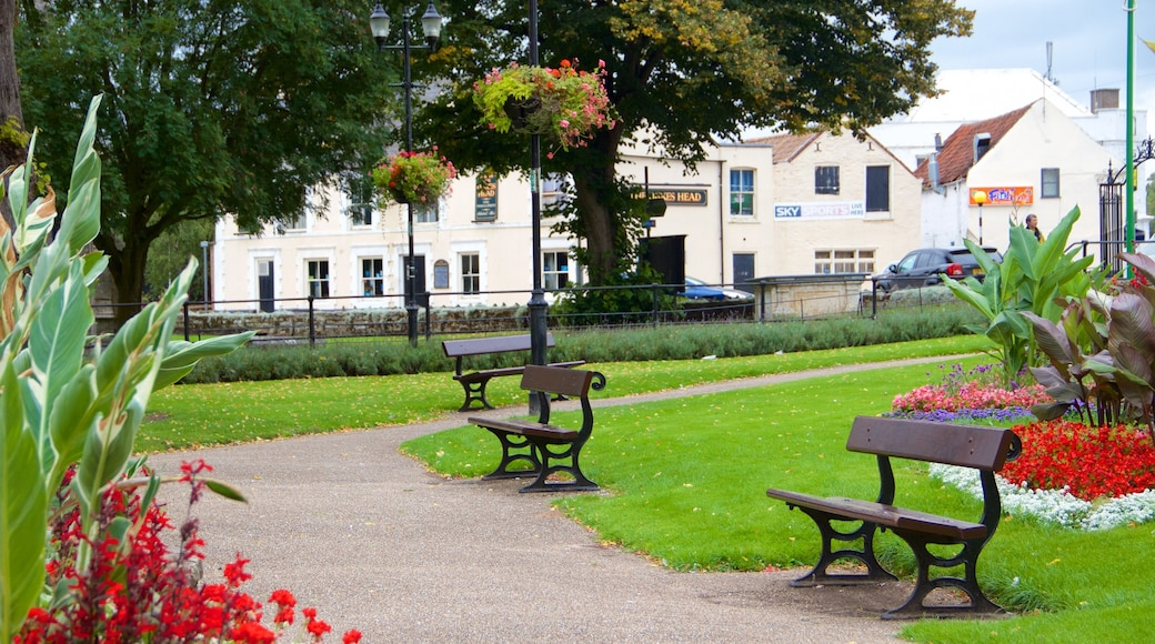 Wisbech which includes a park