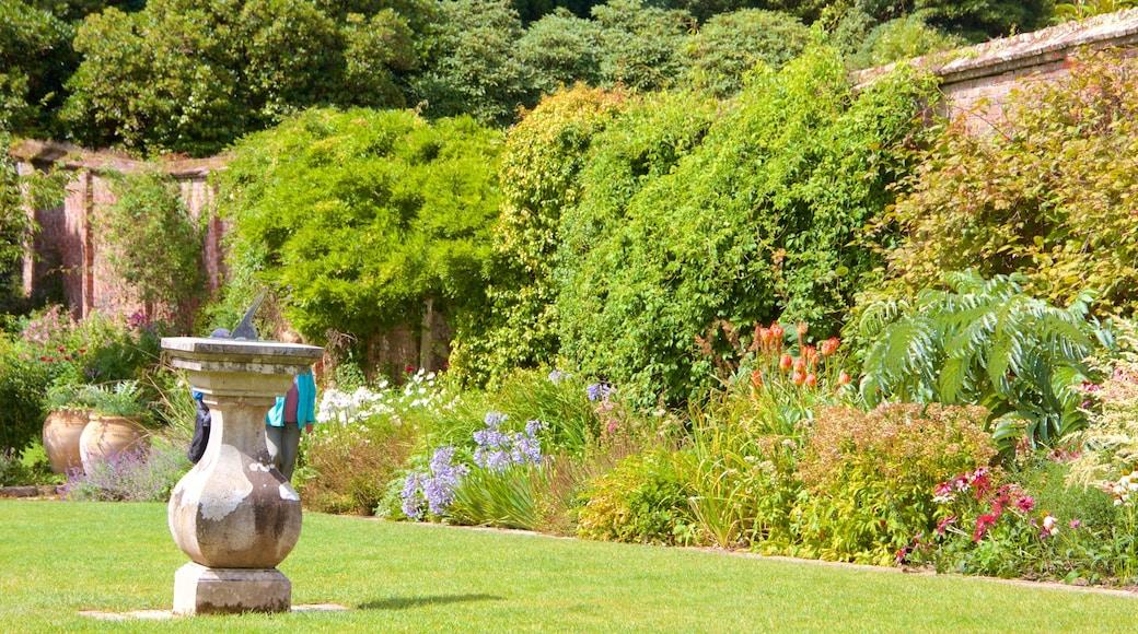 Lost Gardens of Heligan qui includes jardin