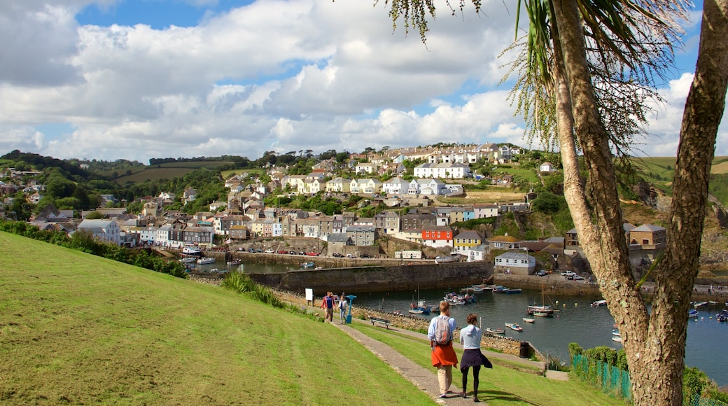 Mevagissey showing a bay or harbour and a coastal town as well as a couple