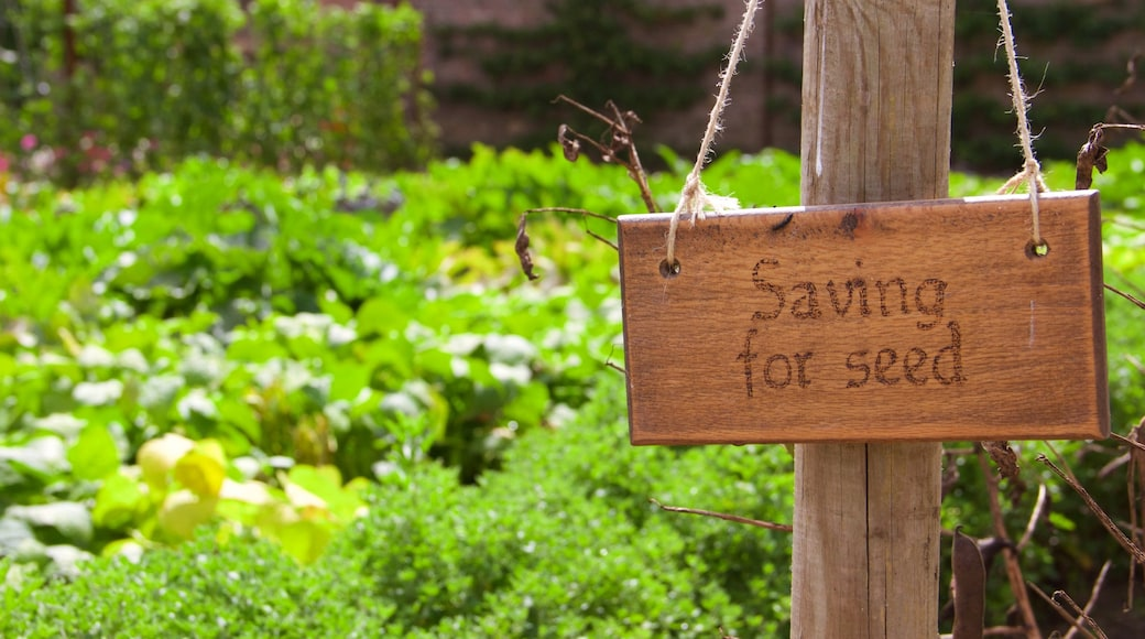 Lost Gardens of Heligan montrant jardin et signalisation