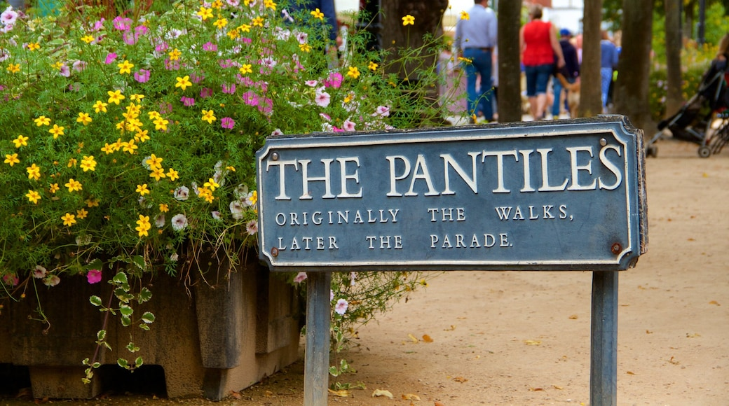 Pantiles which includes signage