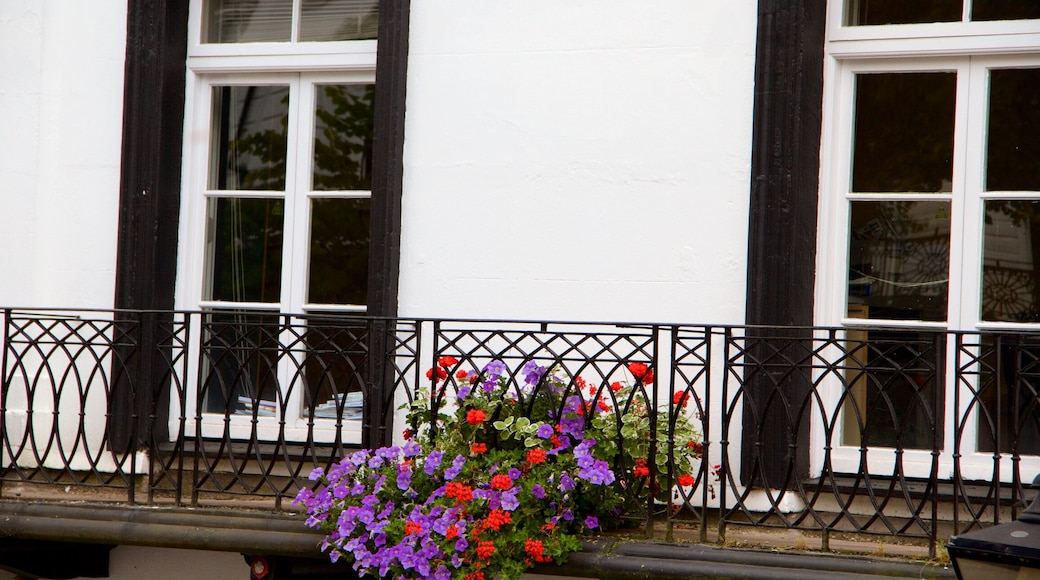 Pantiles featuring flowers
