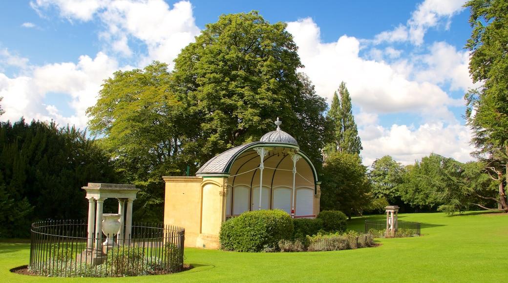 Royal Victoria Park which includes a park