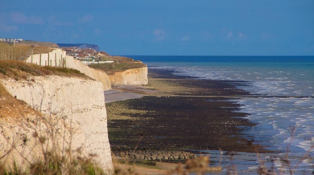 Brighton showing general coastal views and rugged coastline