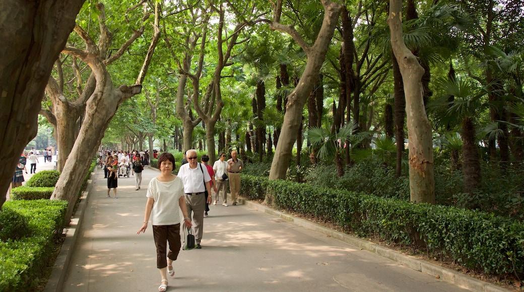 สวนสาธารณะ Fuxing ซึ่งรวมถึง สวน ตลอดจน คนกลุ่มเล็ก