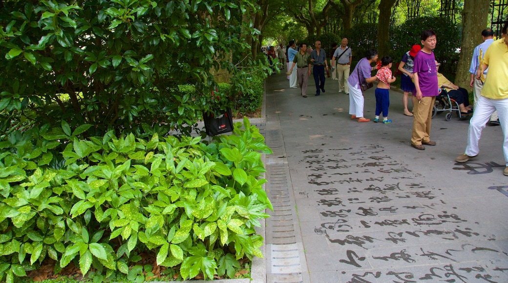 สวนสาธารณะ Fuxing เนื้อเรื่องที่ สวน
