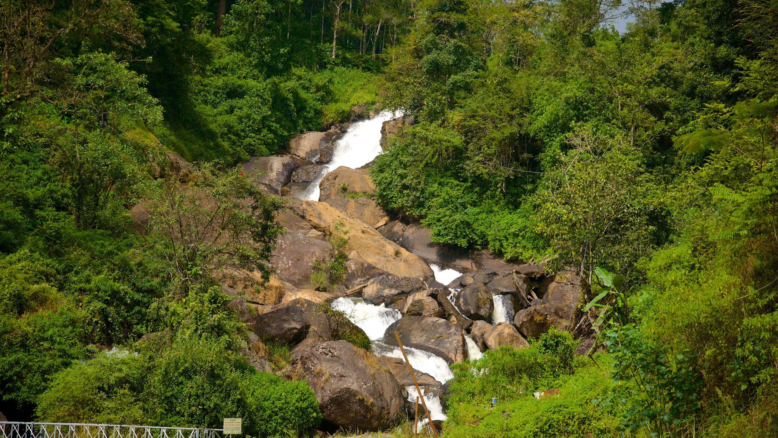 Devikolam, Kerala, India