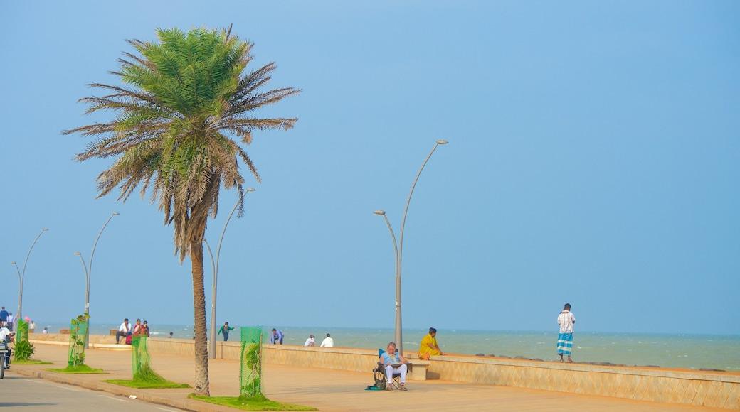 Pondicherry featuring general coastal views