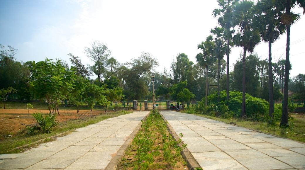 Động Hổ trong đó bao gồm khu vườn