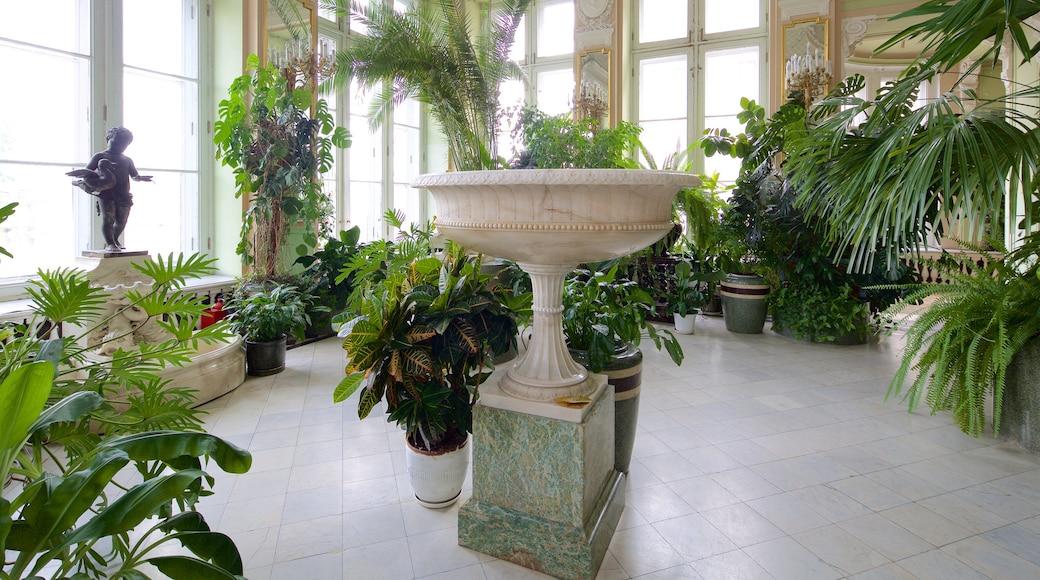 Anichkov-palatset presenterar interiörer och chateau eller palats