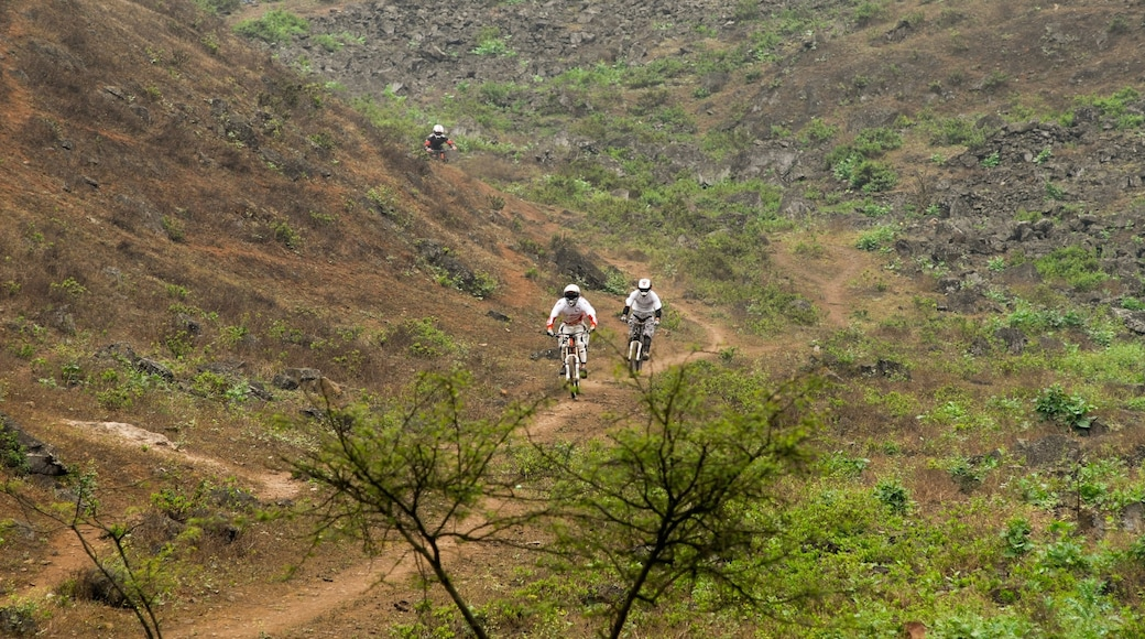 Pachacámac das einen ruhige Szenerie und Mountainbiking