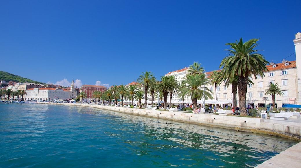 Split Riva showing general coastal views