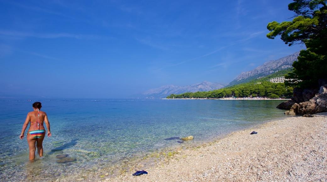 Brela Beach showing a pebble beach as well as an individual female