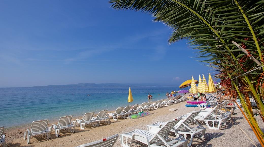 Brela Beach featuring a pebble beach
