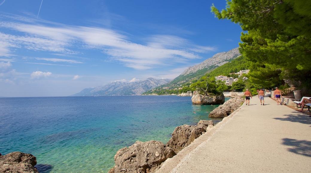 Brela strand som inkluderar kustutsikter och en stenstrand
