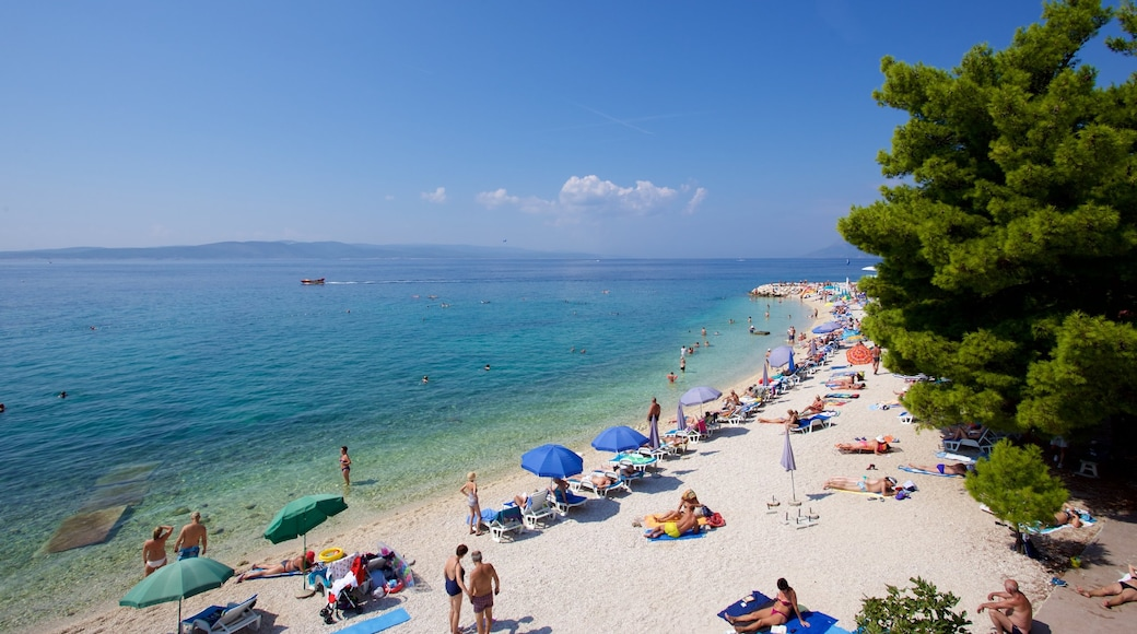 Baska Voda Beach featuring a pebble beach as well as a small group of people