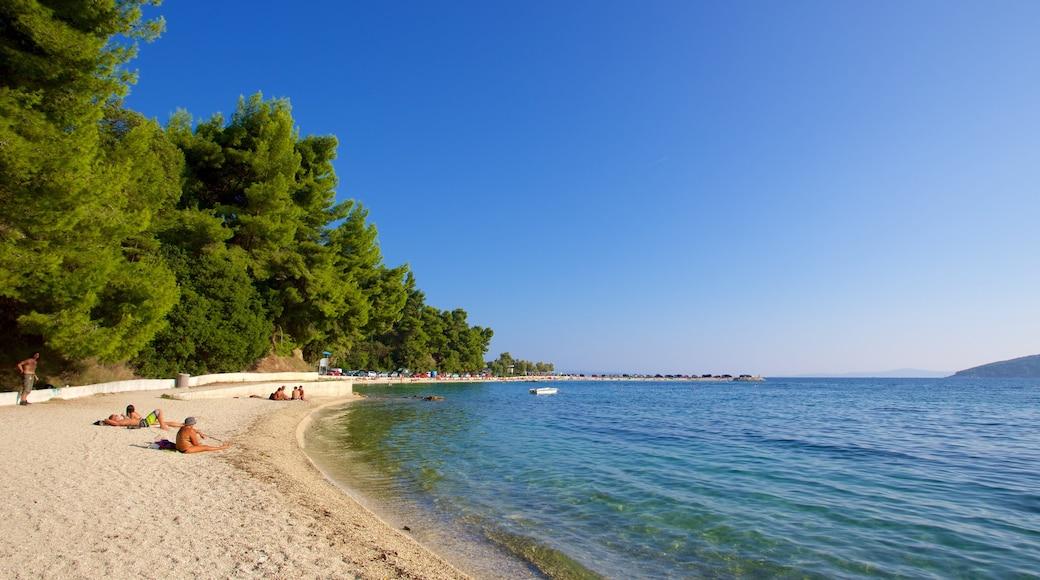 Plage Kasuni montrant plage et vues littorales aussi bien que petit groupe de personnes