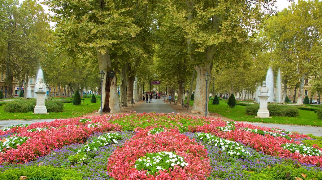 Zrinjevac featuring a park and flowers