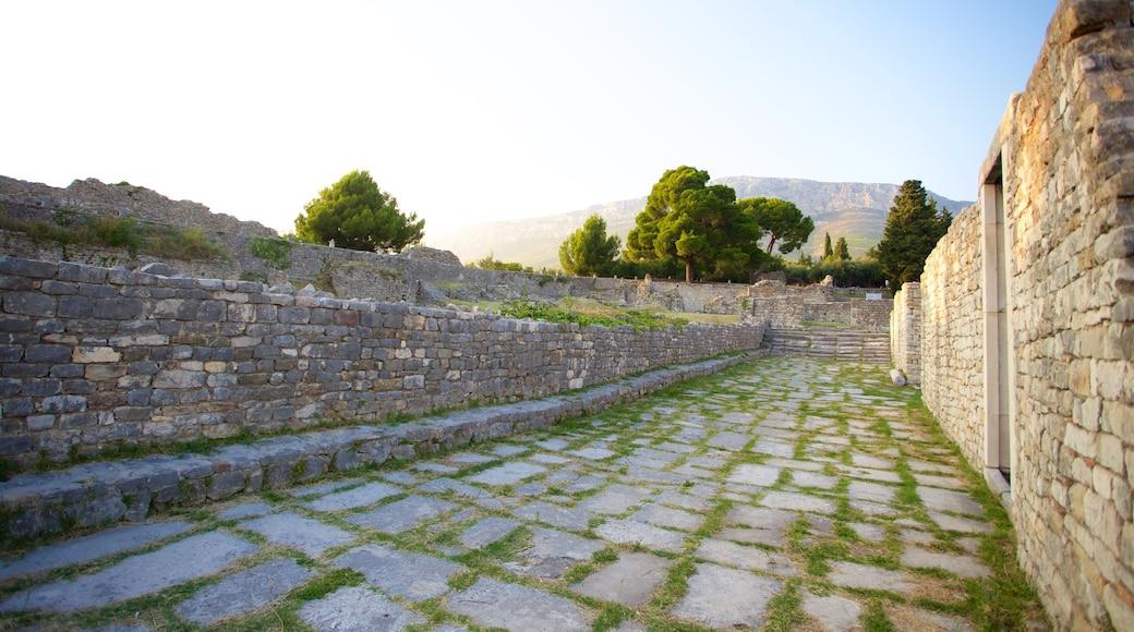 Ruines de Salone qui includes bâtiments en ruines et patrimoine historique