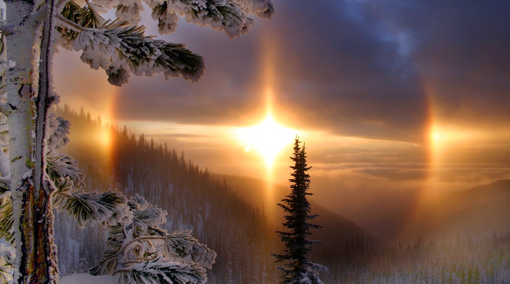 Whitefish which includes snow, a sunset and landscape views