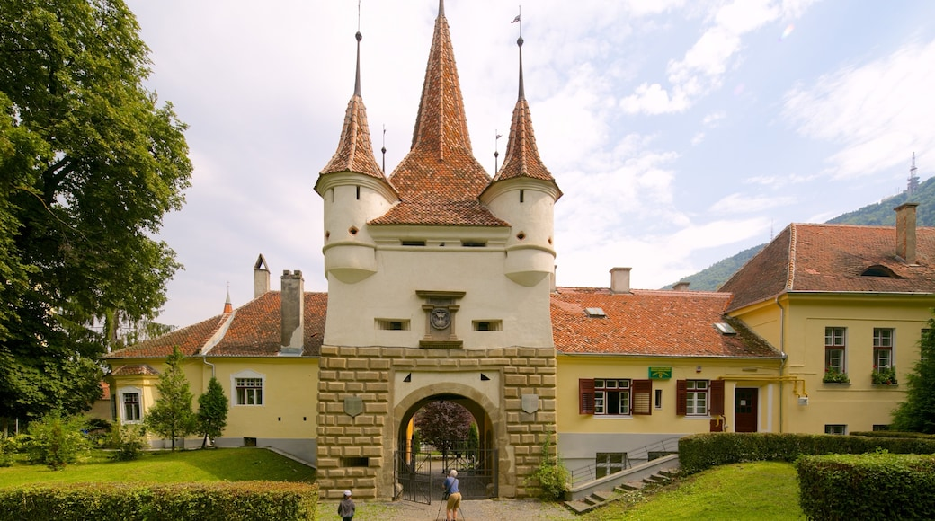 Brasov which includes a castle