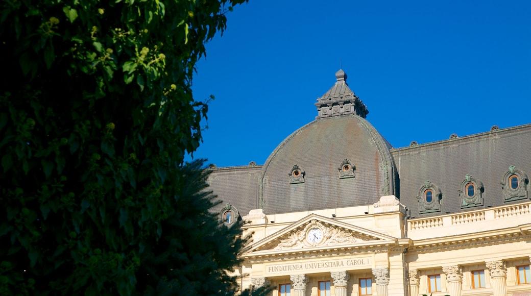 布加勒斯特 呈现出 歷史建築