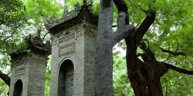 大雁塔 设有 廟宇或禮拜堂 和 花園