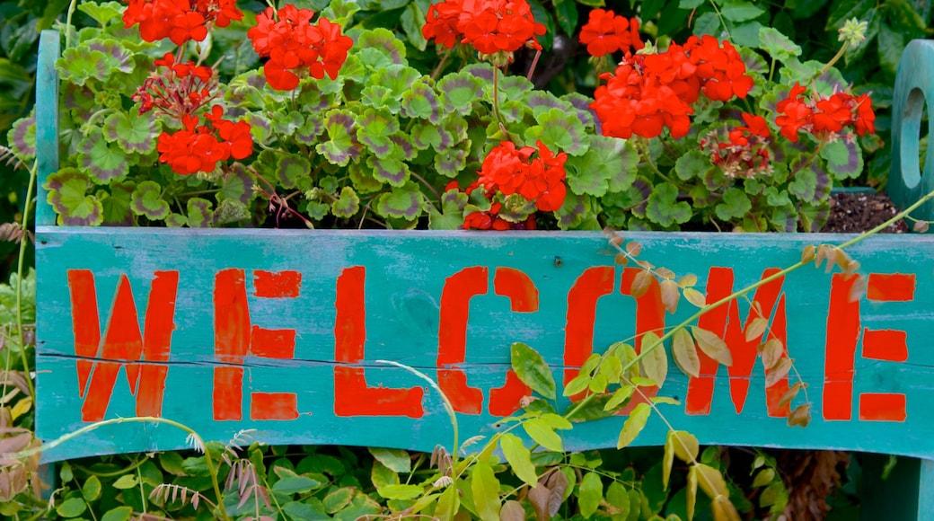 Provincetown caracterizando sinalização e flores