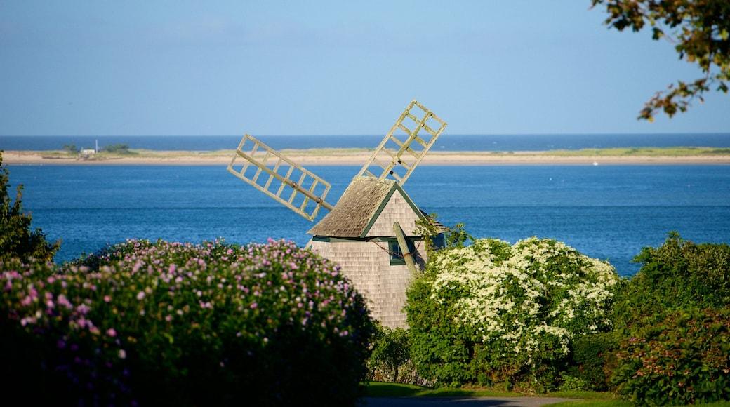 Chatham mostrando paisagens litorâneas, flores silvestres e um moinho de vento