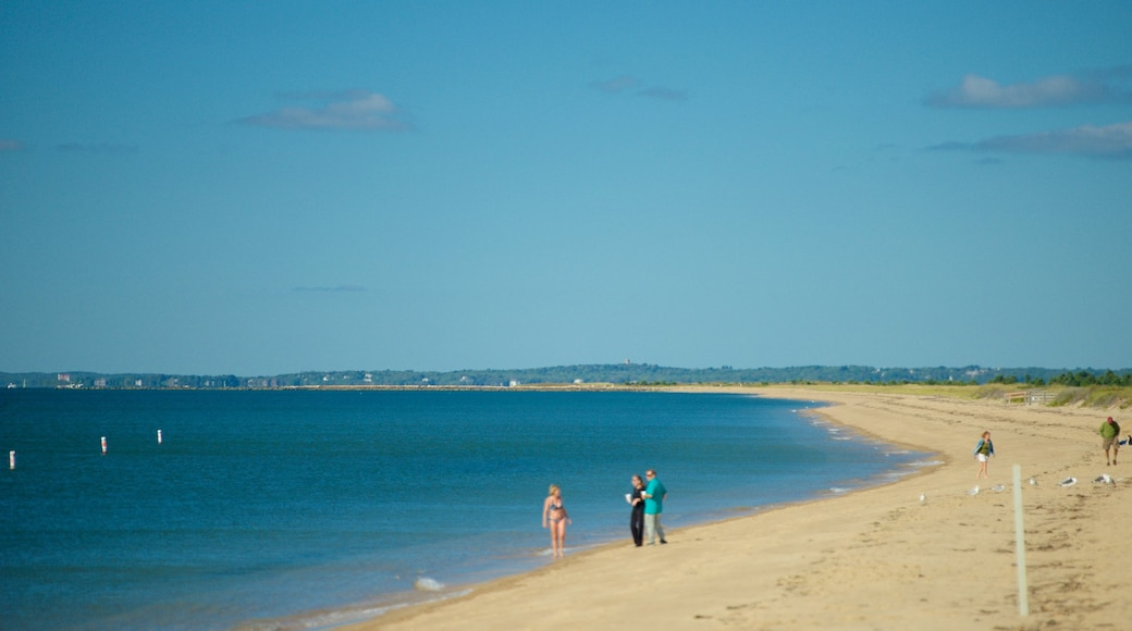 South Cape Beach State Park which includes a sandy beach as well as a family