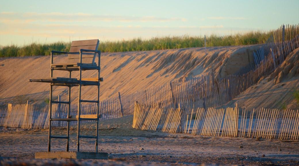 Sandy Neck Beach mostrando uma praia de pedras