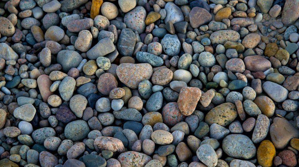 Sandy Neck Beach que inclui uma praia de pedras