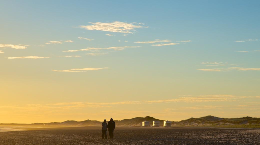 Sandy Neck Beach mostrando uma praia de pedras assim como um casal
