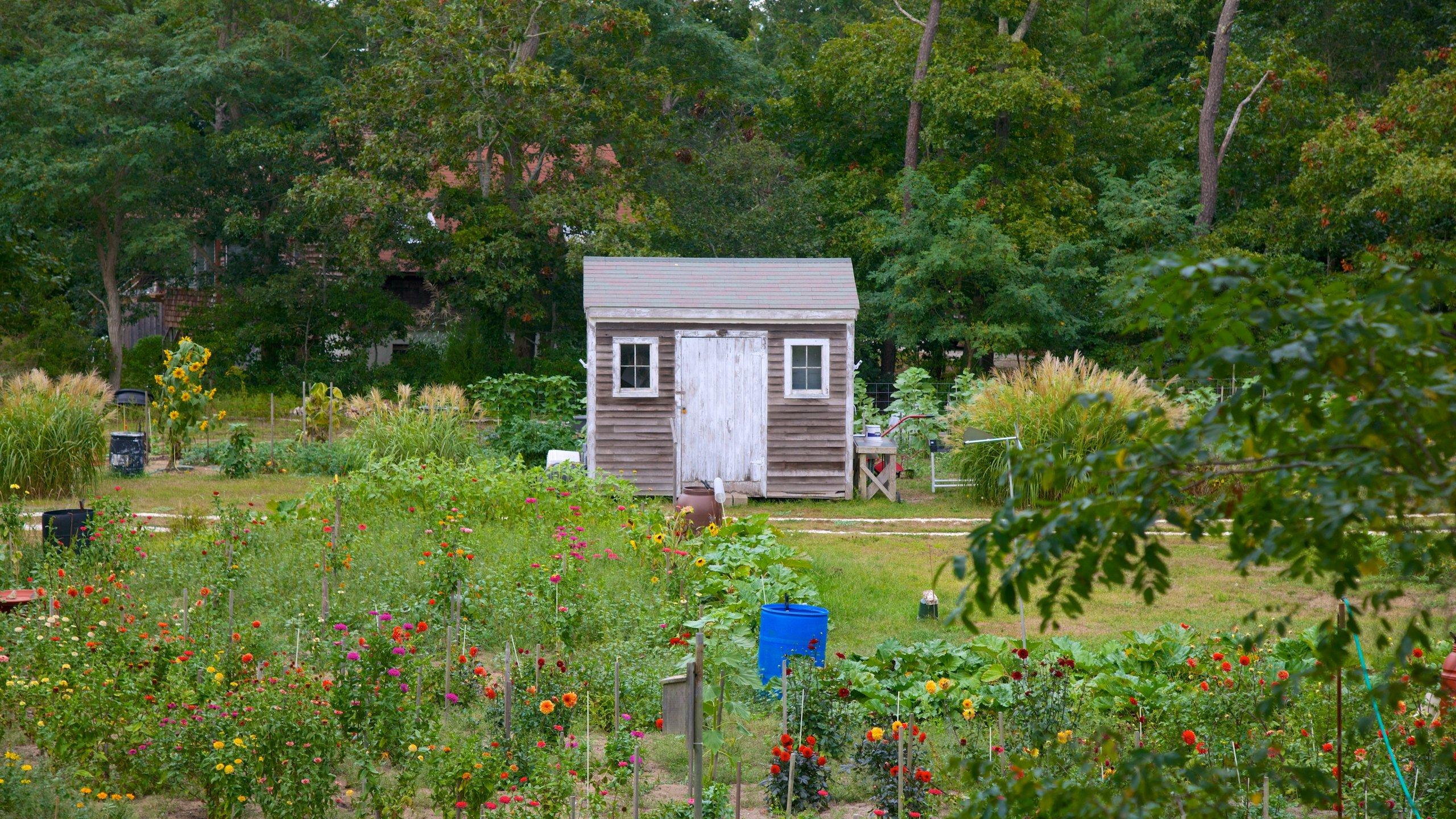 Truro, Massachusetts, United States of America