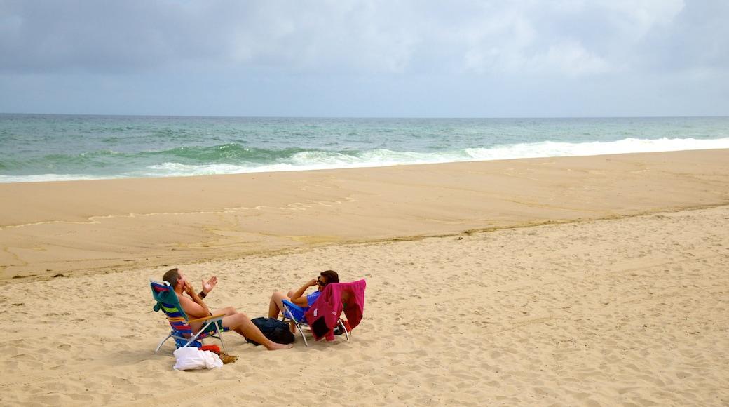 Nauset Beach which includes a beach as well as a couple