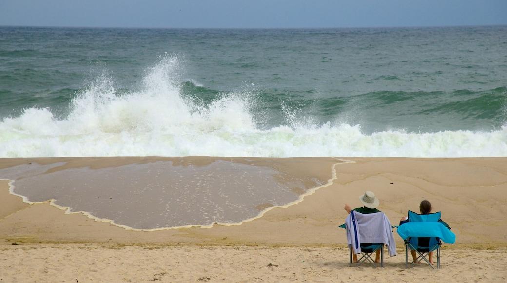 Nauset Beach which includes a sandy beach as well as a couple