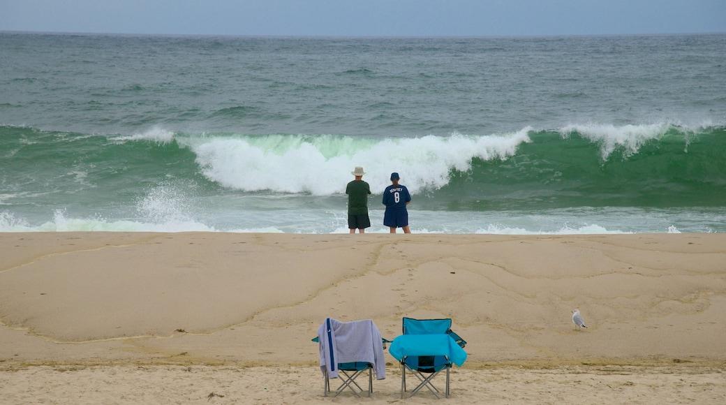 Nauset Beach featuring a beach as well as a couple